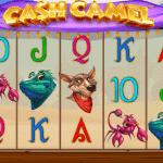 cash camel pokies